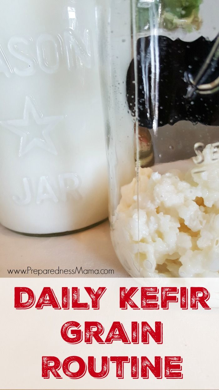 After a serious bout with pneumonia, I doubled down on my kefir grains. This is my kefir grain routine. It takes about 5 minutes to process each day | PreparednessMama