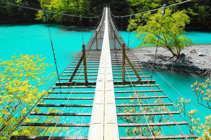 静岡県・大井川地域にある峡谷、寸又峡(すまたきょう)は、奥深い自然に守られ、いまでも多くの野生動物が暮らしています。鉄道人気も相成って、近年、多くの観光客が訪れる人気スポットとなっています。    1 寸又峡とは...
