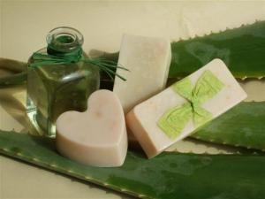 Como fazer sabonete de aloé vera