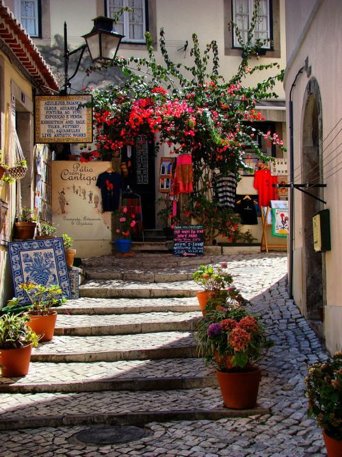 Sintra, Portugal (by Carlos Vieira.)