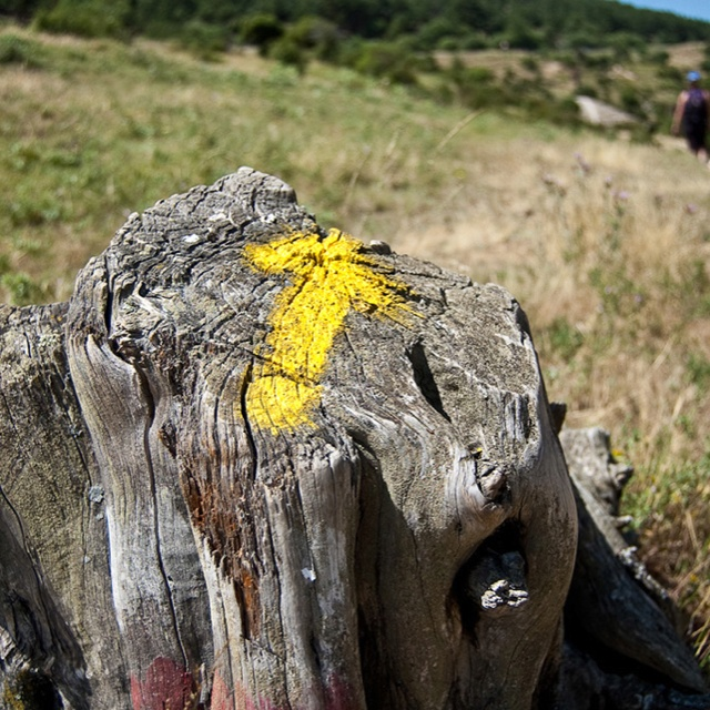 Las flechas amarillas del Camino de Santiago http://www.fotonazos.es/2010/09/las-flechas-amarillas-te-guian-en-el-camino-de-santiago/
