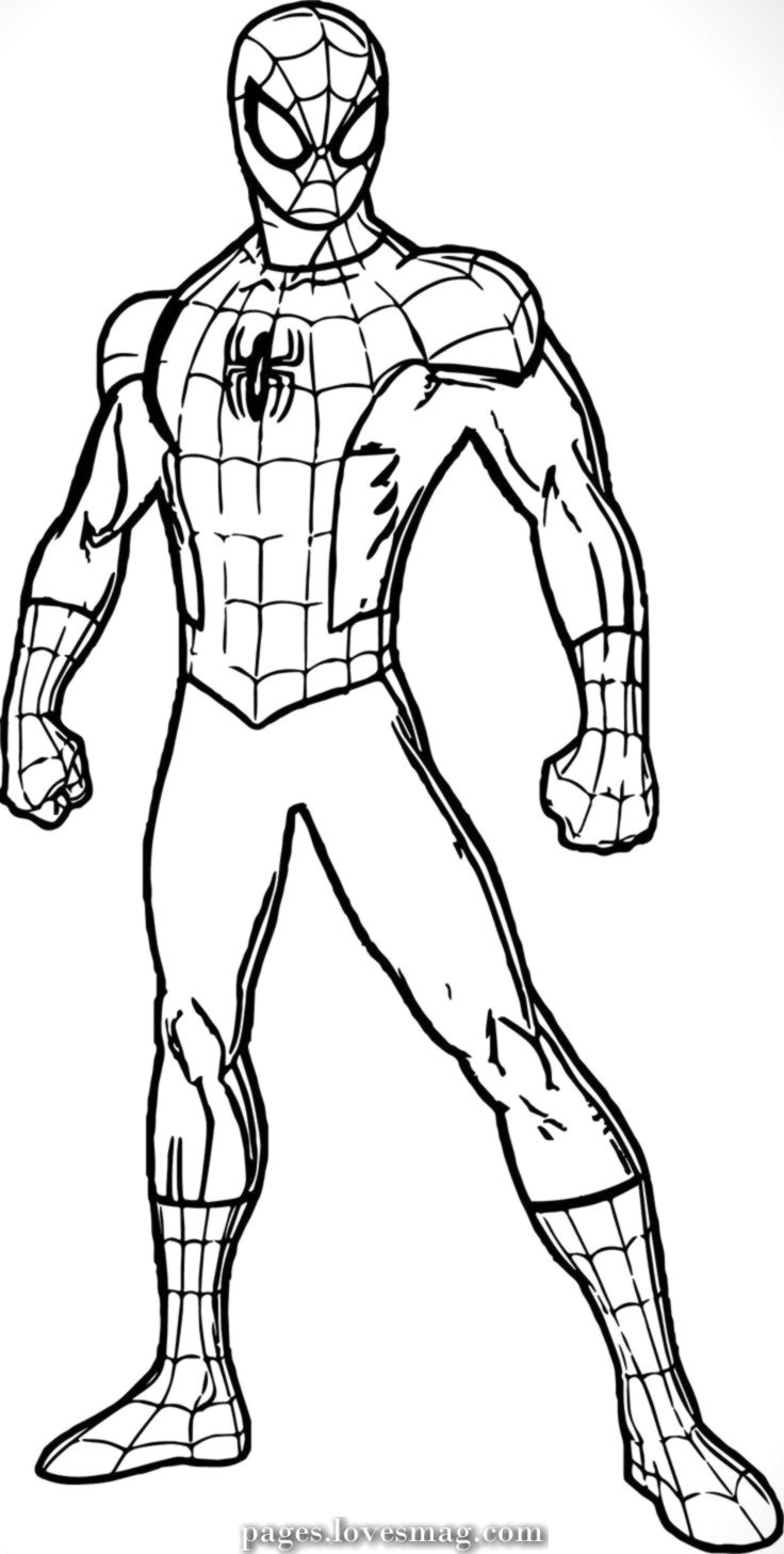 Free Printable Spiderman Colouring Pages And Activity Sheets In The Playroom Spiderman Coloring Spider Coloring Page Coloring Pages