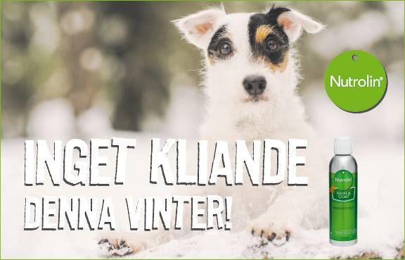 En vintertorr hud får en att känna sig usel och stram. Hundarna har som tur Nutrolin Skin & coat, en invärtes fuktighetskräm och tass-salva.