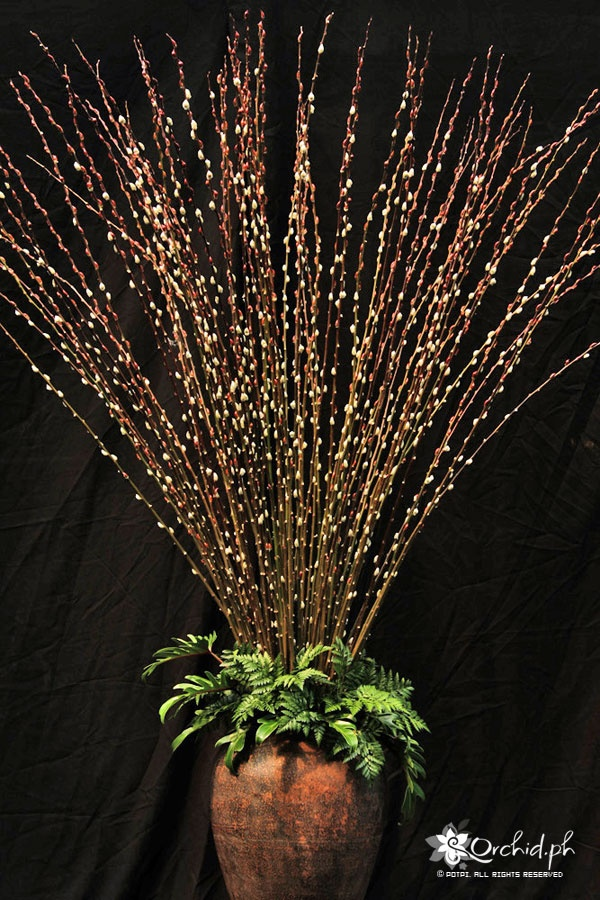 Tall pussywillow centerpieces with greenery as base minus the vase  This Day and Forever