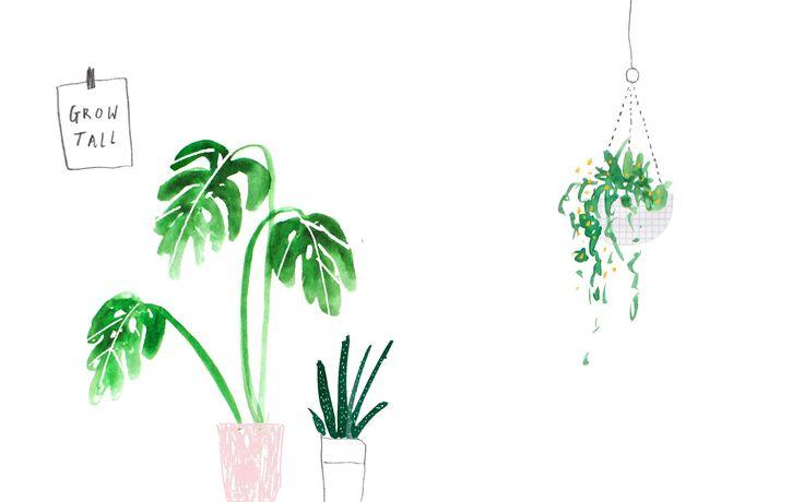 Green pink illustrated watercolour plants palms desktop wallpaper background