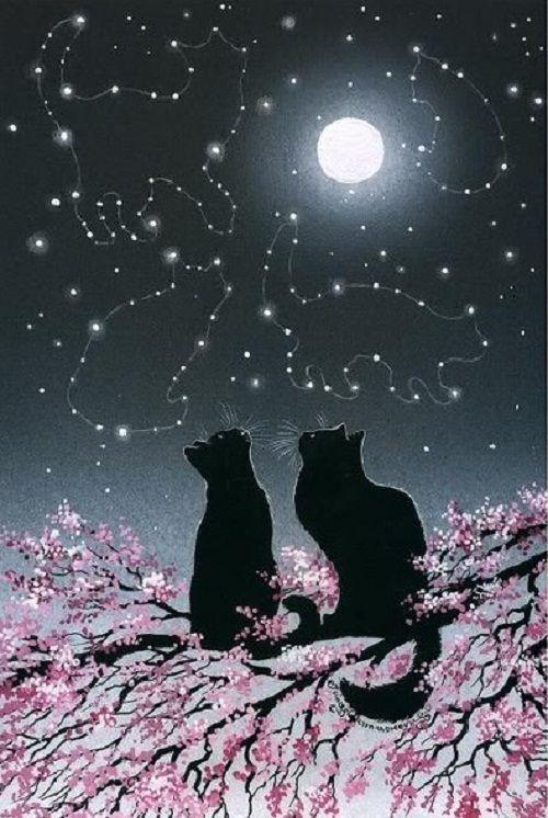 pgarmashove-cawton art | Inspired by cats Russian artist Irina Garmashova (Garmashova-Cawton)
