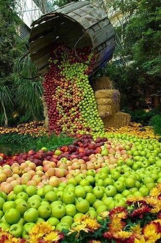 ♥Rotten Apples♥***