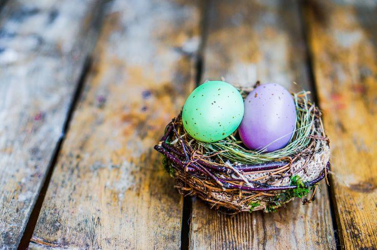Genießen Sie Ostern am Gardasee Tasty Easter Break http://www.colorhotel.it/sonder-angebote-gardasee