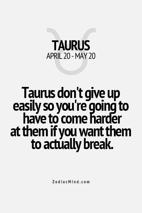 Taurus don't give up