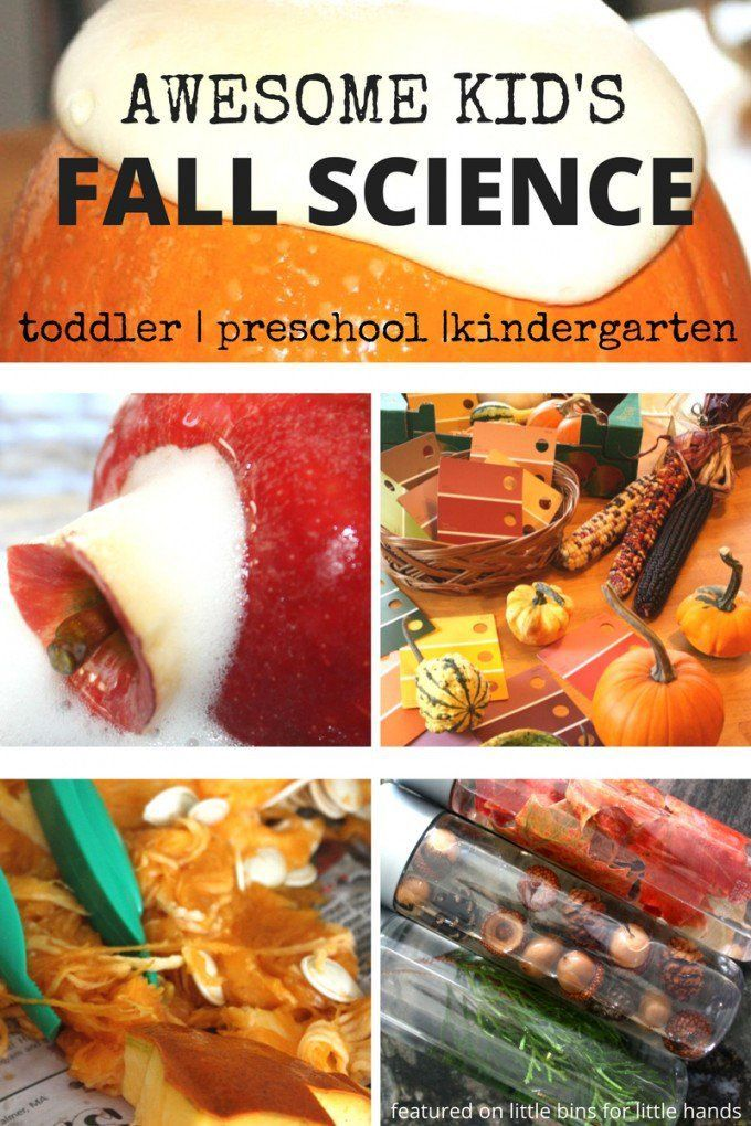 Awesome kid's fall science activities collection perfect for fall themes science activities including apples, pumpkins, leaves, acorns, as well as Thanksgiving themed ideas. These fall science ideas are perfect for kids ages 2-8! Science activities for toddlers, preschoolers, kindergarteners, as well as early elementary age kids. Also included is a collection of Fall STEM activities. Everything you need for your fall lesson planning is right here!