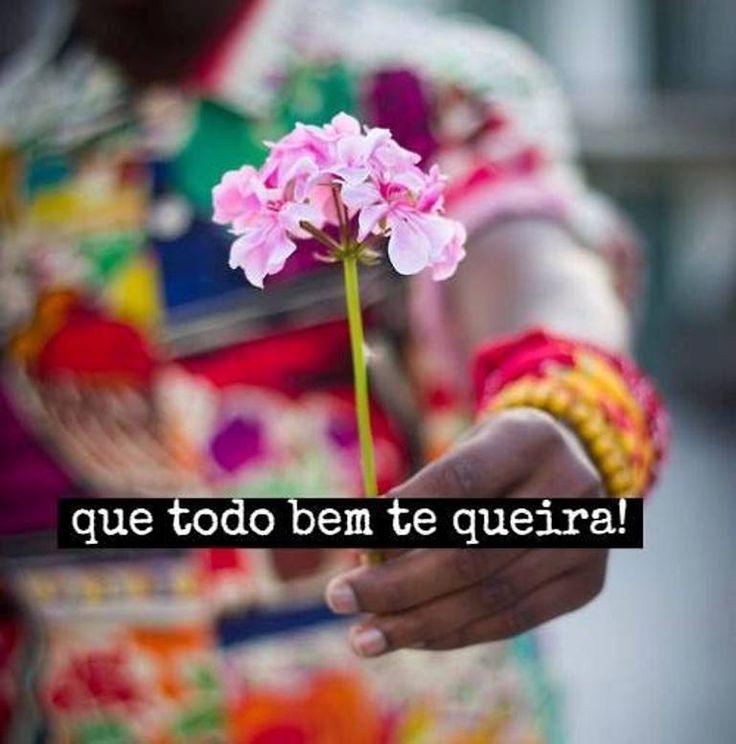 O Que é Good Morning Everyone Em Portugues : Que todo bem te queira vento e amor pinterest tes