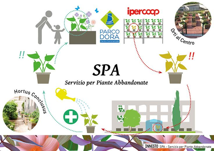 orti dora in poi 2 • SPA servizio per piante abbandonate - Torino (IT) www.innesto.info