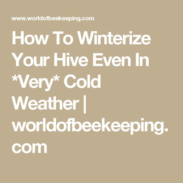 How To Winterize Your Hive Even In *Very* Cold Weather | worldofbeekeeping.com