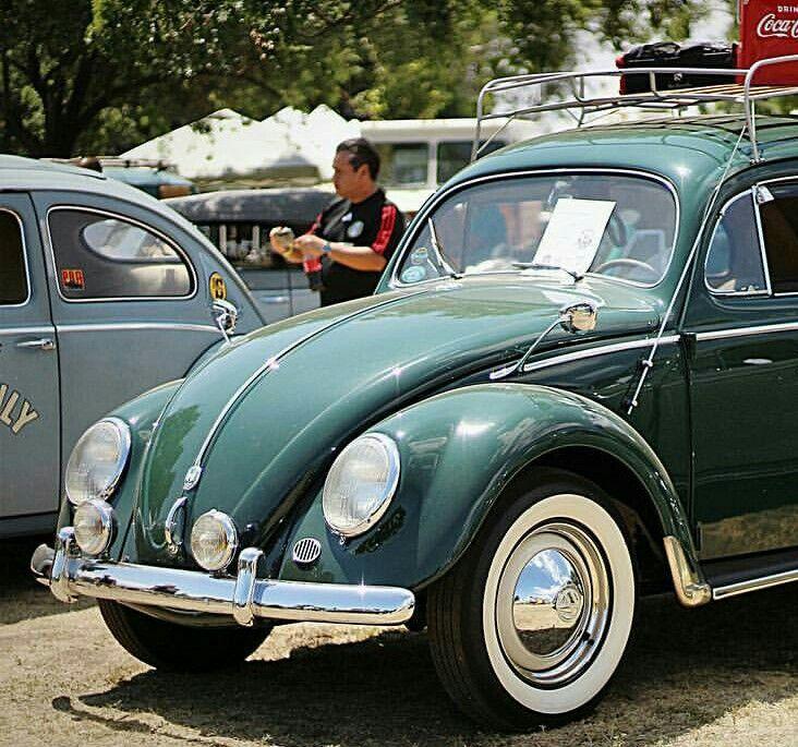 The 27 best Green bugs images on Pinterest | Vw beetles, Volkswagen ...