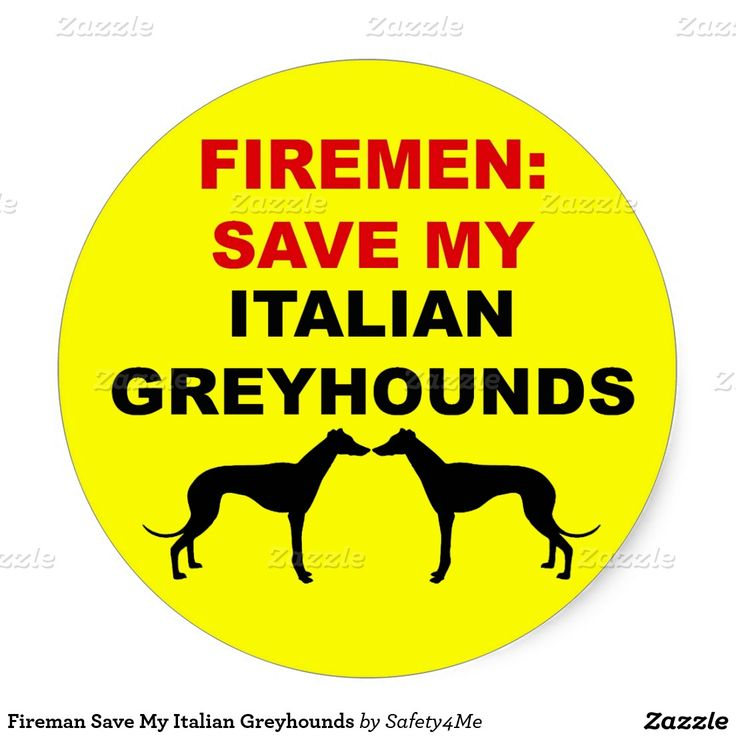 Fireman Save My Italian Greyhounds Classic Round Sticker