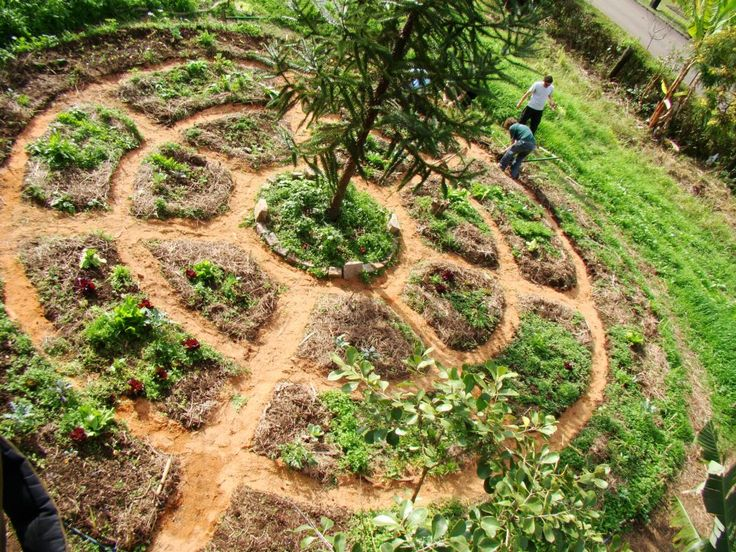 Horta mandala grupo de estudos de agricultura ecol gica for Jardin aromatique