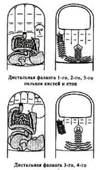 Зубная поликлиника саранск веселовского телефон