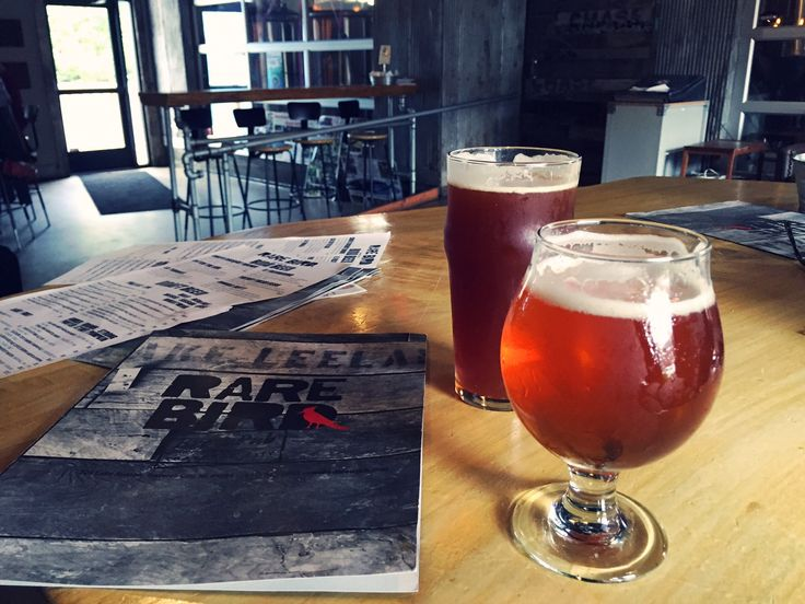 Delicious crisp beers on tap at the Rare Bird