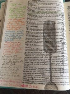 I reflected on a Sunday message about wrestling with God in this Bible Journaling message in Genesis. Colored pencils and my Inspire Bible worked perfectly here.