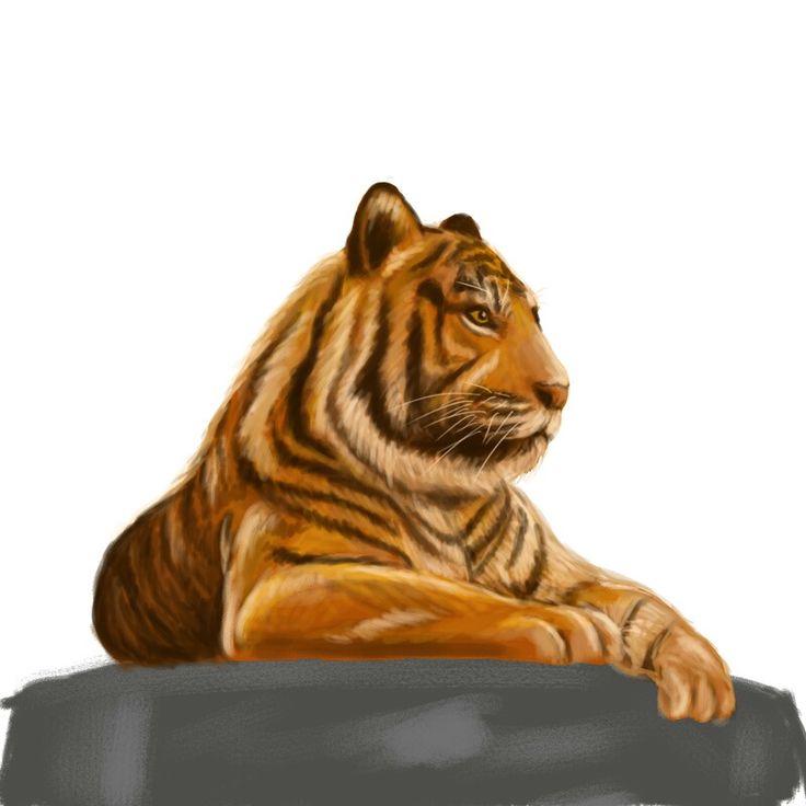 WIP-tiger