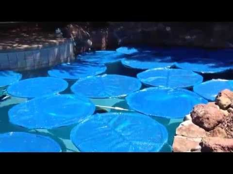 Homemade swimming pool solar rings from http://mikethepoolman.com - YouTube