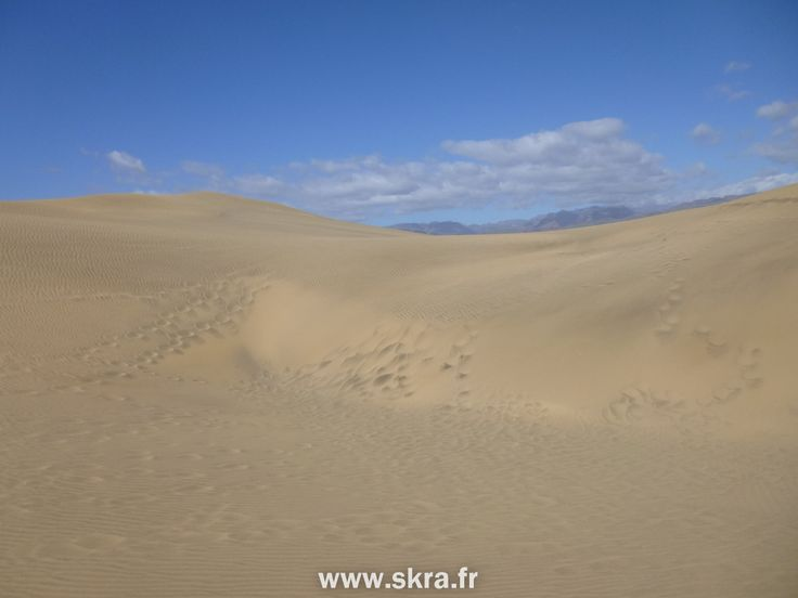 Dunes de sable de Maspalomas, Gran Canaria