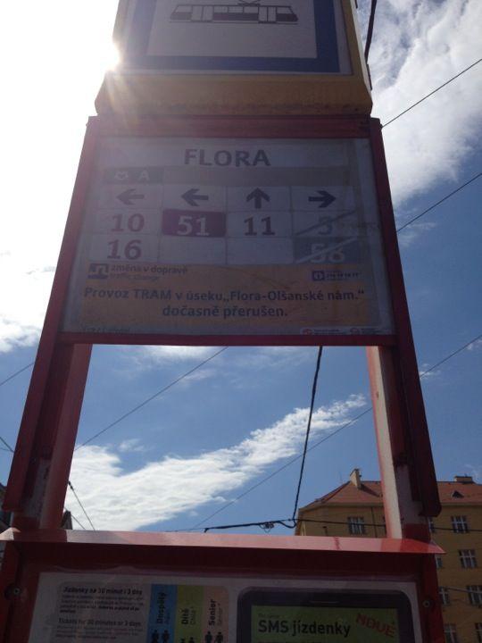 Estación de Flora