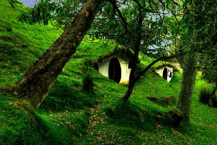 Have you seen our album of underground homes yet? There are a lot more around than you realise and the concept actually makes a lot of sense. on The Owner-Builder Network  http://theownerbuildernetwork.co/social-gallery/have-you-seen-our-album-of-underground-homes-yet-there-are-a-lot-more-around-than-you-realise-and-the-concept-actually-makes-a-lot-of-sense