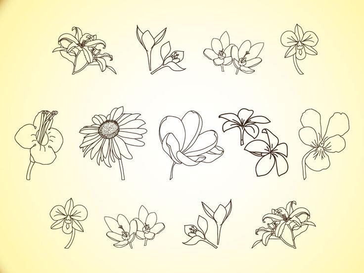 Free Simple Line Drawings | Vector Flower Line Illustrations