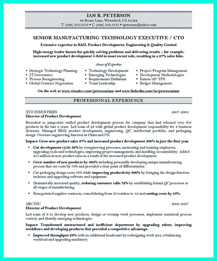 cto resume or chief technical officer resume can be considered as resume for senior level technology