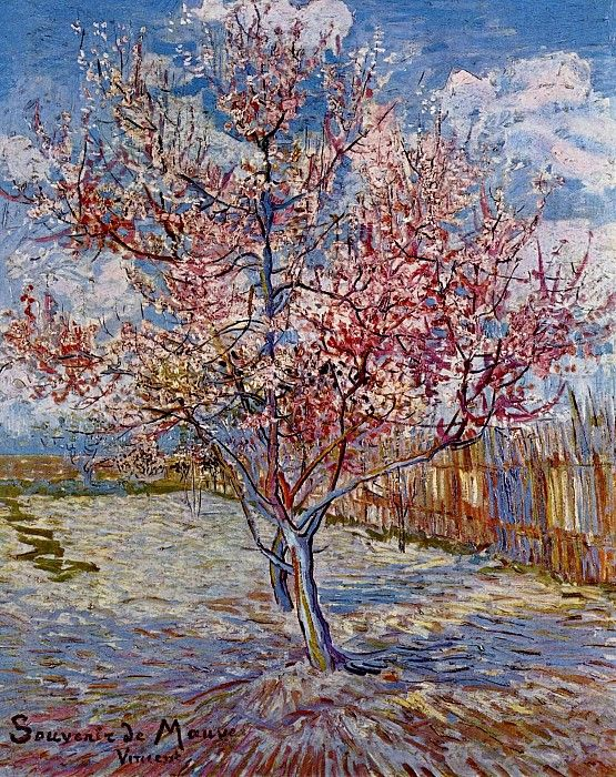 Цветущие персики (в память о Мауве). Винсент Ван Гог
