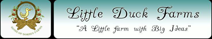 Little Duck Farms --- Pecans