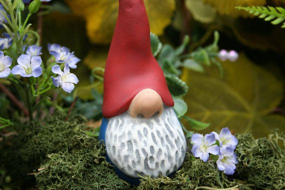 Nosey Little Garden Gnome - Funny Gnome - Terrarium Decor