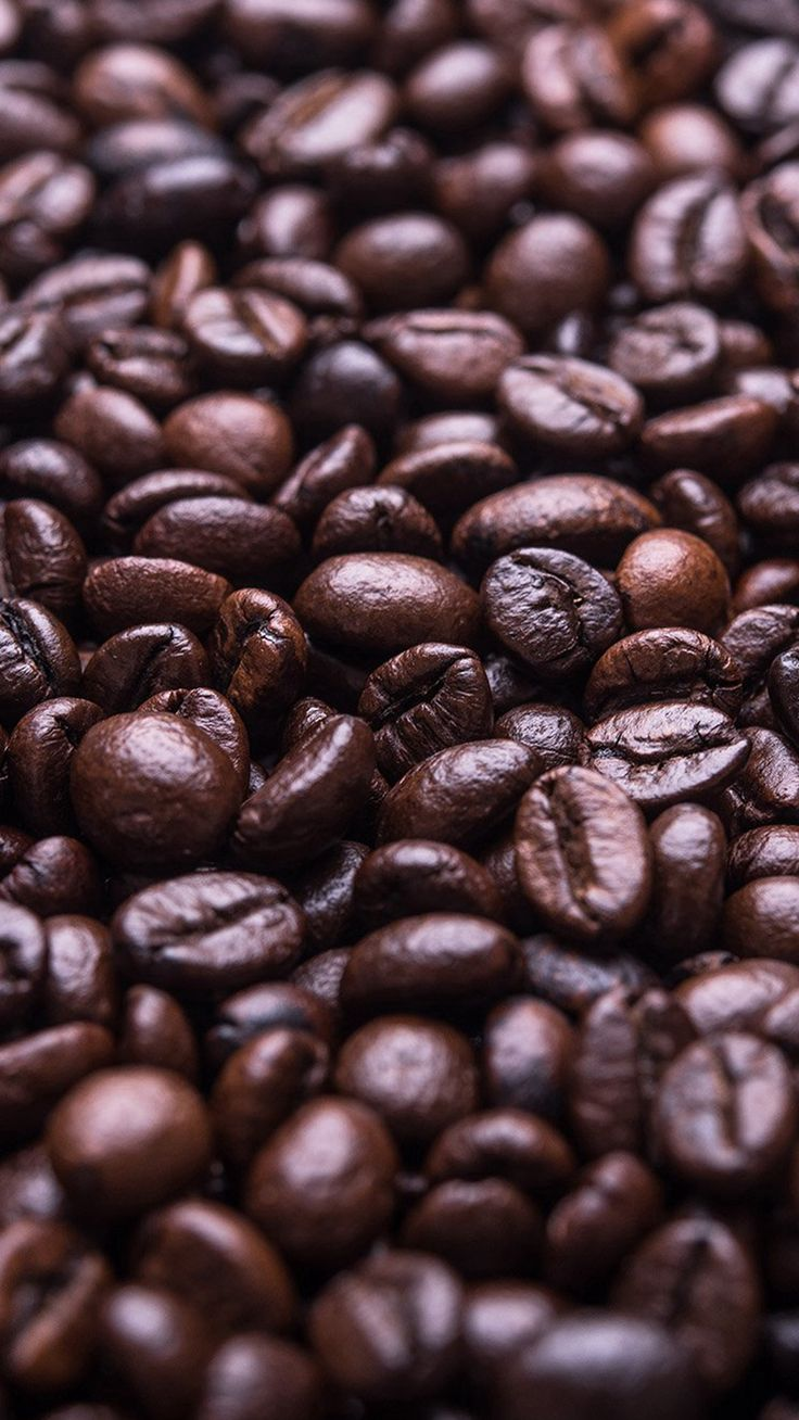 Images of Food Coffee Beans Wallpaper - #SC