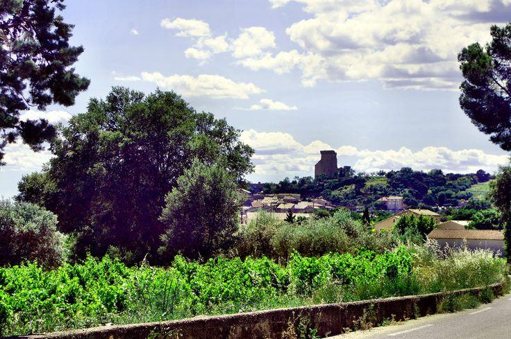 Zamek na wzgórzu Chateauneuf du Pape. Widok z winnic na miasteczko z wina i winem żyjące.