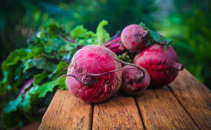 Jak na pěstování červené řepy? – Pěstuj zeleninu