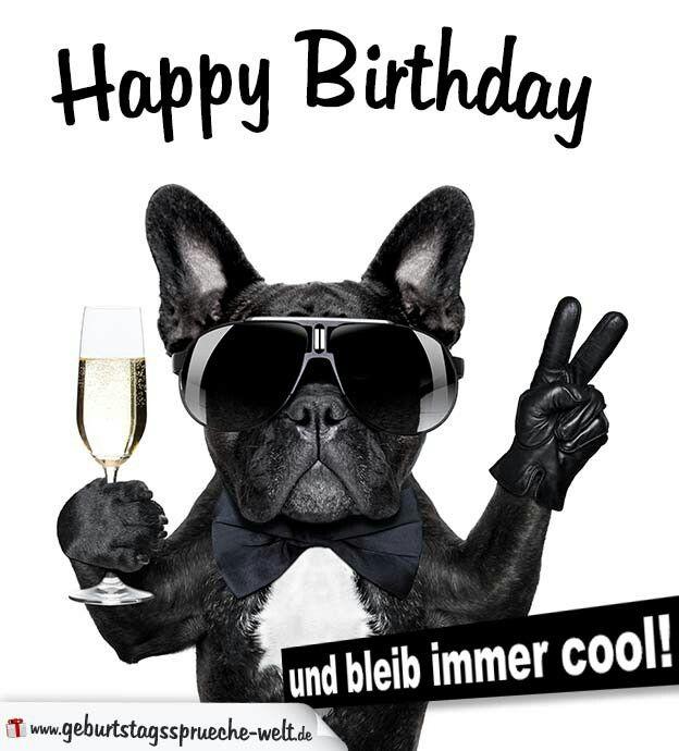 Happy Birthday Und Bleib Immer Cool Idei Dlya Doma Bouledogue
