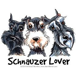 Schnauzers ~ ✞ ♥ I asked God for a Best Friend. He gave Me a Schnauzer. ♥ ✞