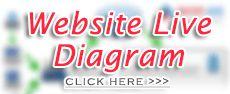 Website cia.gov - Visual Diagram