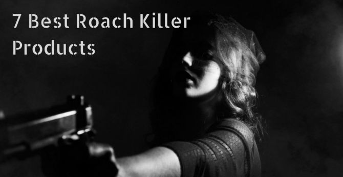 7 Best Roach Killer Products 2017 - Pest Survival Guide