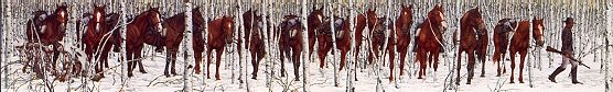 Two Indian Horses, Bev Doolittle ~ one of my favorite prints....I look at it everyday