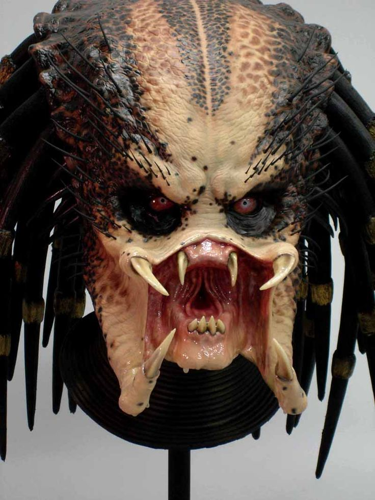 predator face - Google Search | Predator | Pinterest ...