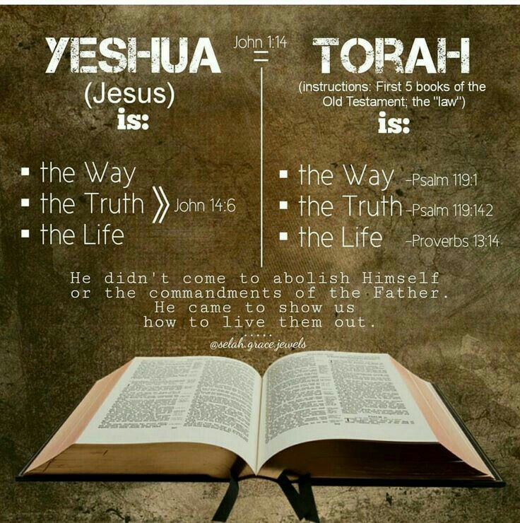 Image result for image of Torah is the Way, Truth and Life