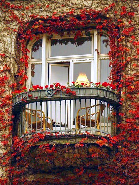 Ivy Balcony, Paris, France photo via sophy - Blue Pueblo ______________________________________ I could imagine myself having a nice cup of tea or hot chocolate on that balcony :D: