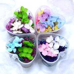 Бессмертные цветы поделки пакет мобильного телефона материал оболочки в штучной упаковке высушенных цветов браслеты кольца эпоксидной стакан с частями формы