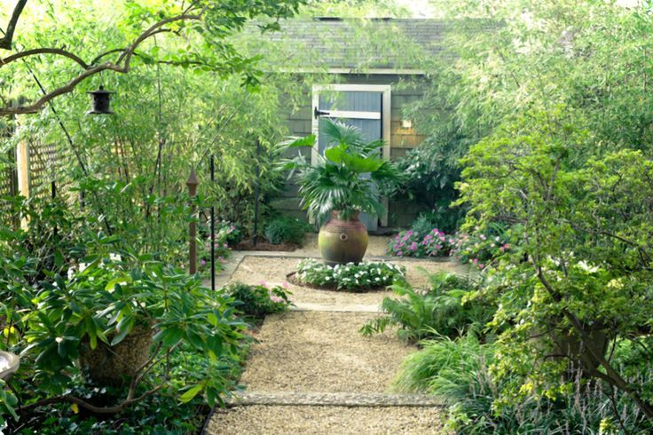 Best 25 Small Tropical Gardens Ideas On Pinterest Small