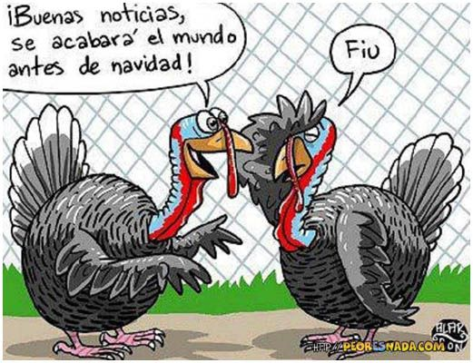 FRASES GRACIOSAS DE PAVOS DE NAVIDAD | Humor sano y cosas increíbles