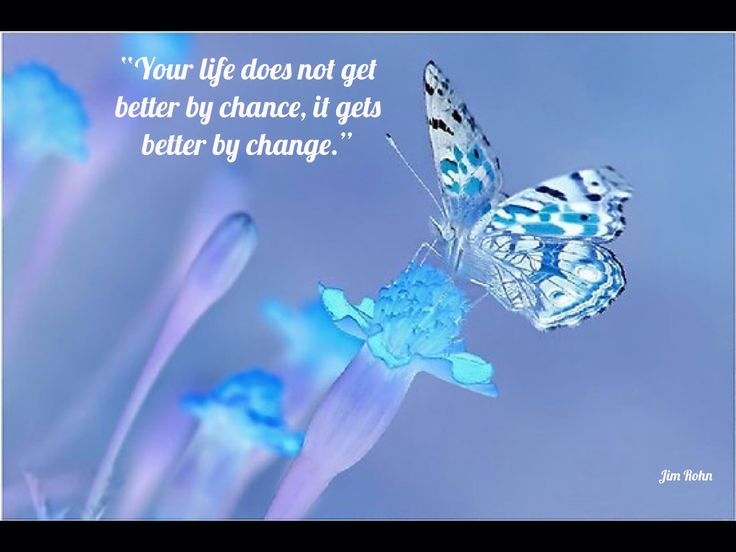 Deep Quotes About Life Wallpaper Butterfly Blessings Butterfly Blessings Count Your