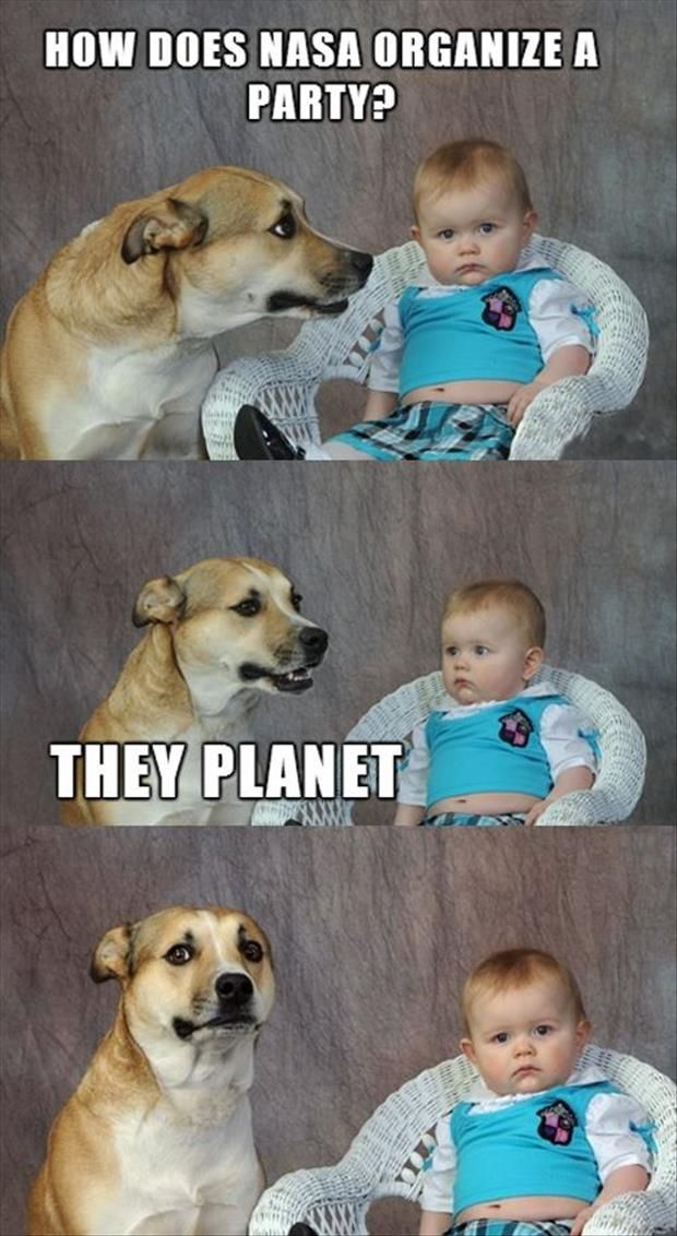 funny baby and dog one liner jokes