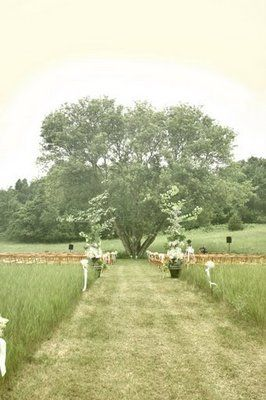 I really like the idea of getting married under a big tree. #pleasedontrain